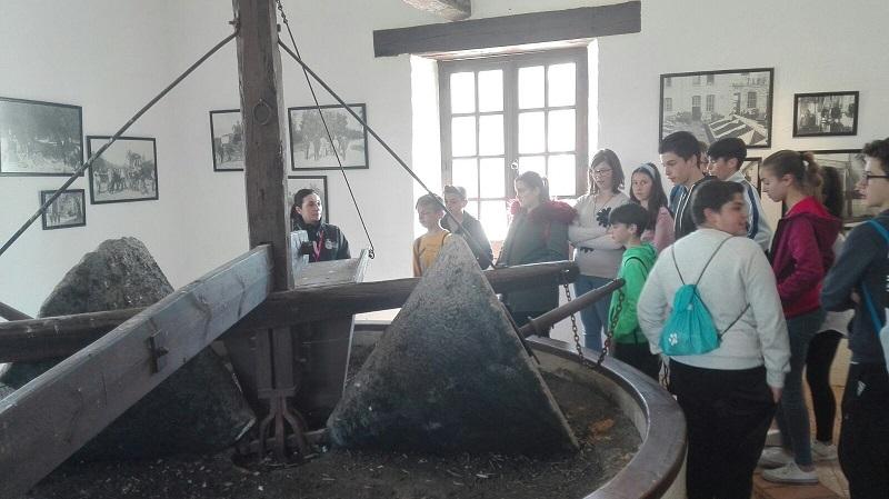 180416 Visita Museo Foto 08