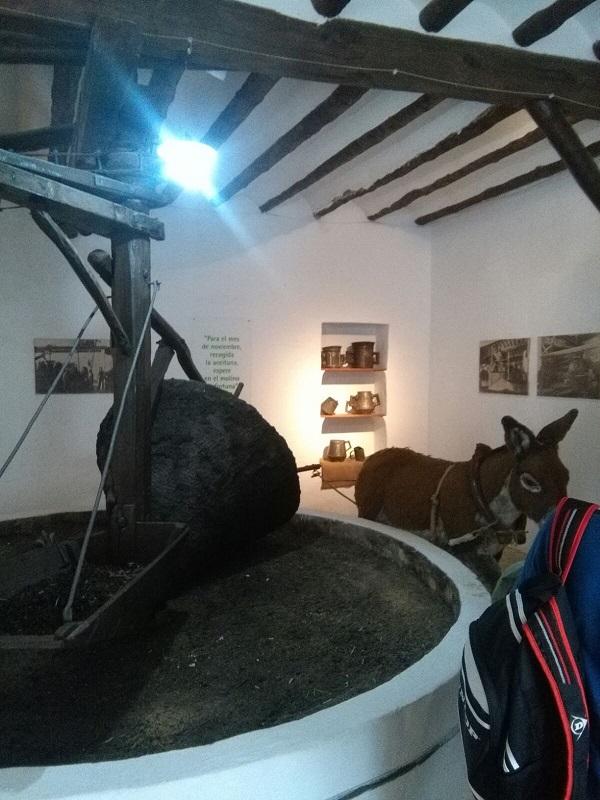 180416 Visita Museo Foto 11