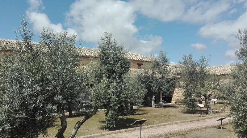 180416 Visita Museo Foto 26